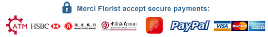 We accept secure payments